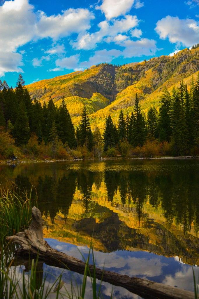 Lizard Lake 1